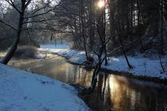 Winter morning (Steenjep) Tags: vinter jylland winter skarrild skarrildhus sne snow å stream frost ice karstoftå vandløb vand water sun reflex refleks spejling morgen morning light