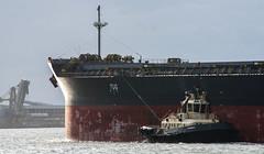 Murray has a tug (OzzRod) Tags: pentax k3 smcpentaxda55300mmf458 boat ship tug tugboat port harbour hokurikumaru newcastle intothesun