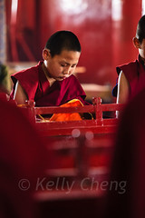 Mongolia-130803-618 (Kelly Cheng) Tags: amarbayasgalantmonastery asia buddhism centralasia mongolia boy ceremony child color colorful colour colourful culture heritage indoor monk people persons pray prayer red religion tourism travel traveldestinations vertical vivid