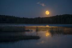 Moonstruck (PixPep) Tags: sulvik arvika värmland sverige sweden moonstruck moon fullmoon