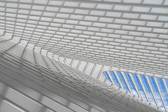 a little piece of sky (Blende1.8) Tags: roof construction dachkonstruktion dach roofconstruction lines window fenster linien perspective sony alpha ilce7m2 85mm a7m2 a7ii architecture architektur indoor interior carstenheyer liege liègeguillemins station bahnhof modern contemporary santiagocalatrava sel85f18
