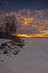 Last Rays Of A Springtime Sun (k009034) Tags: 500px trees sky sunset nature sun clouds snow evening birch fields countryside agriculture rural springtime no people crate finland tranquil scene copy space oulainen matkaniva teamcanon