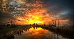 #nice #evening #oostvaardersplassen #Lelystad #Flevoland #sunset #landscape #photography #GoProHERO5 #GoPro #mirror #colourful
