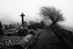 The Path Less Followed (JamieHaugh) Tags: bath lansdown beckford somerset england sony a6000 cemetery blackandwhite blackwhite monochrome bw outdoors graves tree graveyard mist fog grass black uk nature britain