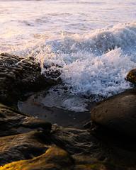 (ELMUNDOPORMISOJOS) Tags: nikond600 sandiego oceanbeach california