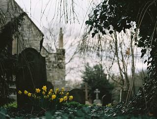 Spring in the Churchyard at Ingram