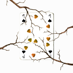 nine of spades (brescia, italy) (bloodybee) Tags: 365project playingcards cards play game 9 nine spade leaf branch autumn fall season humor fun white black brown square draw stilllife