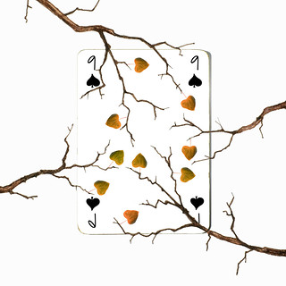 nine of spades (brescia, italy)
