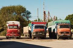 Camiones - Trucks (rodrigo.valla) Tags: buenosaires argentina sanantoniodeareco urbana town camión truck
