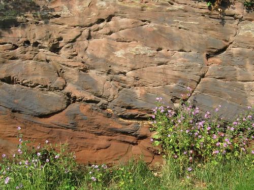 Farndon: Farndon Cliffs (Cheshire)