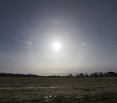 Untitled_Panorama1a(1000 x 878) (sungazer4) Tags: hatfield ma solarhalo