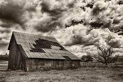 Old Bones (Ian Sane) Tags: ian sane images oldbones barn old vintage decay clouds monochrome bare tree sublimity oregon rural marion county architecture landscape agriculture photography canon eos 5d mark ii two camera ef1740mm f4l usm lens