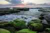 066A1083-5 (Iron Pig) Tags: turimetta sunrise beach landscape sydney australia