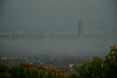 Bodennebel (ES_789) Tags: herbst herbstfarben remstal fellbach morgen nebel sony a6000