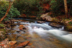 LookingGlass+1_9200_TCW (nickp_63) Tags: long exposure nature brevard rocky stream route 276 pisgah national forest north carolina nc platinumheartaward