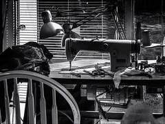 Still Life 2 # 17   .... ; (c)rebfoto (rebfoto) Tags: rebfoto stilllife machine sewingmachine