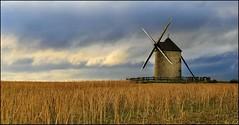 MOLINO. (roberrodriguez1) Tags: windmill molino paisaje landscape ngc inspired by love field wheat sky