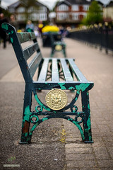 City of Cardiff Bench (w.mekwi photography [here & there]) Tags: cardiff cityofcardiff dof bench roathpark hbm wales bokeh niftyfifty depthoffield
