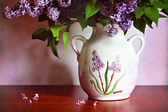 Tiempo de lilas (Helena de Riquer) Tags: syringa lila lilac oleaceae flors flores flowers fleurs fiori textured gerro jarrón vase primavera spring printemps lilas potdefleurs pot flowerpot topf25 helenaderiquer flickr topf50 topf75 carlzeiss 2017 may bloom interestingness stilllife sony sonydsch20 mayo maig topf100 100faves