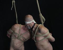 c kiss (shibarigarraf) Tags: shibari kinbaku bondage rope male shibarigarraf kiss