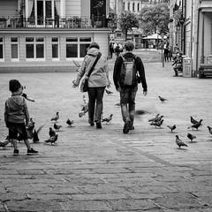 Se frayer un chemin! (guillaumegesret) Tags: jersey world walk street streetphotogrpahie streetview streetphotographer streetart canon city couple monochrome moment black blanc blackandwhite blackwhite noiretblanc brittany human humaniste humain history homme