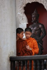 Hold on a minute (leewoods106) Tags: watchediluang thailand chiangmai northernthailand asia southeastasia orange monk buddistmonks buddistmonk buddhism canonef100mmf28macrousm canon canoneosm photographer photography photo photos