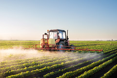 507279814 (charlesvisser) Tags: monoculture agriculturalmachinery nonurbanscene toxicsubstance landscaped sorghum soybean dust weeding driving spraying scenics growth metal material industry agriculture nature ruralscene crop cultivated wheat plant sunlight sunset day springtime season field meadow land sky farm cropsprayer tractor agriculturalequipment equipment food