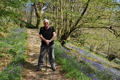 none shall pass (126/365) (werewegian) Tags: theotheralan walking bluebell path glenbranter waterfall walk argyll scotland werewegian may17 365the2017edition 3652017 day126 6may17