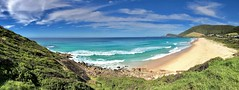 Blueys Beach, Pacific Palms, Mid North Coast, NSW (Black Diamond Images) Tags: blueysbeach pacificpalms midnorthcoast nsw greatlakesnsw greatlakes australianbeaches beach appleiphone7plus appleiphone iphone7plus iphone iphonepanorama panorama appleiphone7pluspanorama iphone7pluspanorama