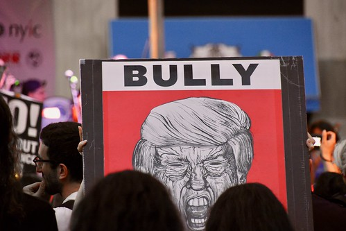 Donald Trump Bully, From FlickrPhotos
