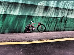 #murmur (funkyruru) Tags: bike hsinchu hsinchuvelodrome nagasawa njs pista taiwan trackfever velodrome cycle fixedgear fixie trackbike