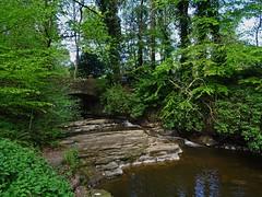 Low Tide At The Dean (Bricheno) Tags: kilmarnock ayrshire deancastlecountrypark fenwickwater rnbfenwickwater bridge stream burn waterfall scotland escocia schottland écosse scozia escòcia szkocja scoția 蘇格蘭 स्कॉटलैंड σκωτία bricheno