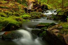 Mossy Stream (AdamBuzzo) Tags: stream river creek brook waterfall rapids moss water slow shutter rocks moving michigan upper peninsula up north western small dickinson mitchell