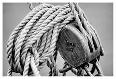Block & rope (leo.roos) Tags: block pulley katrol harbour haven ships schepen rope touw boat boot noiretblanc maassluis a7s rousselparisanastigmatprojectiontraiteseriepf127mmf35 projectorlens projectionlens day127 dayprime dayprime2017 dyxum challenge prime primes lens lenzen brandpuntsafstand focallength fl darosa leoroos