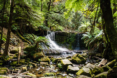 Horseshoe Falls (JPS-Photography) Tags: nikon d7000 auastralia tasmania water rocks waterfall trees river landscape waterscape