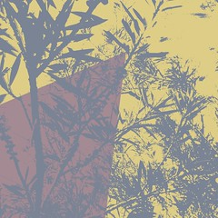 FLURRY 2 (Zala02Creations) Tags: print prints artwork floralprint digitalart graphics graphicdesigner designer designing digitalpainting painting art artist graphicartist digital digitalartist forsale wallpaper background wall printed printdesign printeddesign designs pattern floralpattern floralart floralcollage flowerart digitalcollage collage digitalmanipulation artprints artprint