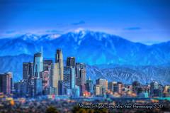 Toy City Tilt Shift (Michael F. Nyiri) Tags: dtla california southerncalifornia downtownlosangeles skyscraper building skyline tiltshift arty