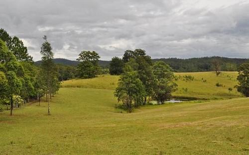 13 Moores Lane, Eungai Creek NSW
