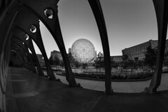 Arènes de Picasso (Michel Couprie) Tags: europe france 93 seinesaintdenis noisylegrand marnelavallée architecture urban modern bw blackandwhite noiretblanc nb fisheye wideangle composition contrejour backlight contrast canon eos samyang 8mm couprie