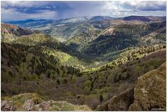 vue depuis Le rothenbachkopf (1316 m) (jamesreed68) Tags: rothenbachkopf montagne 68 paysage nature crêtes alsace hautrhin france grandest altitude vallée arbres forêt canon eos 600d