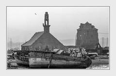 - File1341 c. (Ferruccio Jochler) Tags: mare porto barche cantiere chiesa pesca
