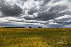 NEAR STORM (TONY-BUENO - Barcelona) Tags: canon eos 5d 5dmkii 24105f4is country sto tormenta campo