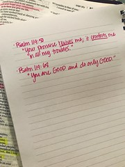 116/365 (arayaf_22) Tags: day116 bible reading christian aphotoaday project365