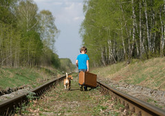 Прогулка (androsoff) Tags: boy children european white may forest rails sleepers road suitcase beagle dog pet animal leash collar headphones music lover journey mammal trees foliage grass nature landscape sky sun clouds day sunny warm tshirt jeans clothes student young friendship brown black nose paws muzzle old vintage large