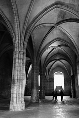 (giovanibr) Tags: avignon france frança palais papes popes palace castle papal medieval gothic fortress residence cultural historical middleages stairs architecture arcs man dark men