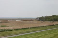Schwimmendes Moor (perspective-OL) Tags: stad stadland sehefelder moor schwimmendes national park nationalpark nordsee jadebusen watt watvögel sehestedt deich