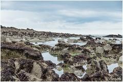 rocks (HP025424)