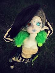 Squish! (Fel Arkanna) Tags: squish bjd msd elf dim dollinmind minifee fantasy punk green stripes