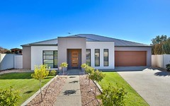 33 Drings Way, Gol Gol NSW