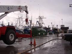 servicios portuarios8-dsc04087